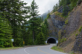 Tunnel in the Olympic National Park, Washington USA