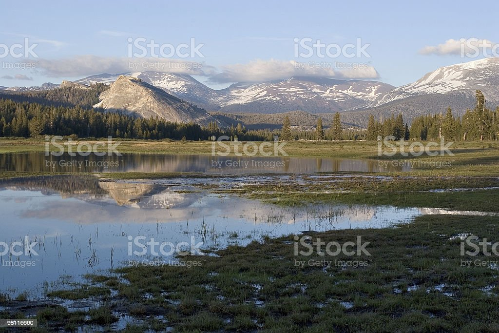 Tuolumne Meadow Reflection in Early Summer stock photo