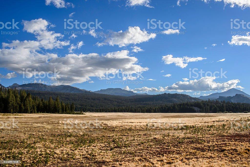 Tuolumne Meadows Yosemite National Park stock photo