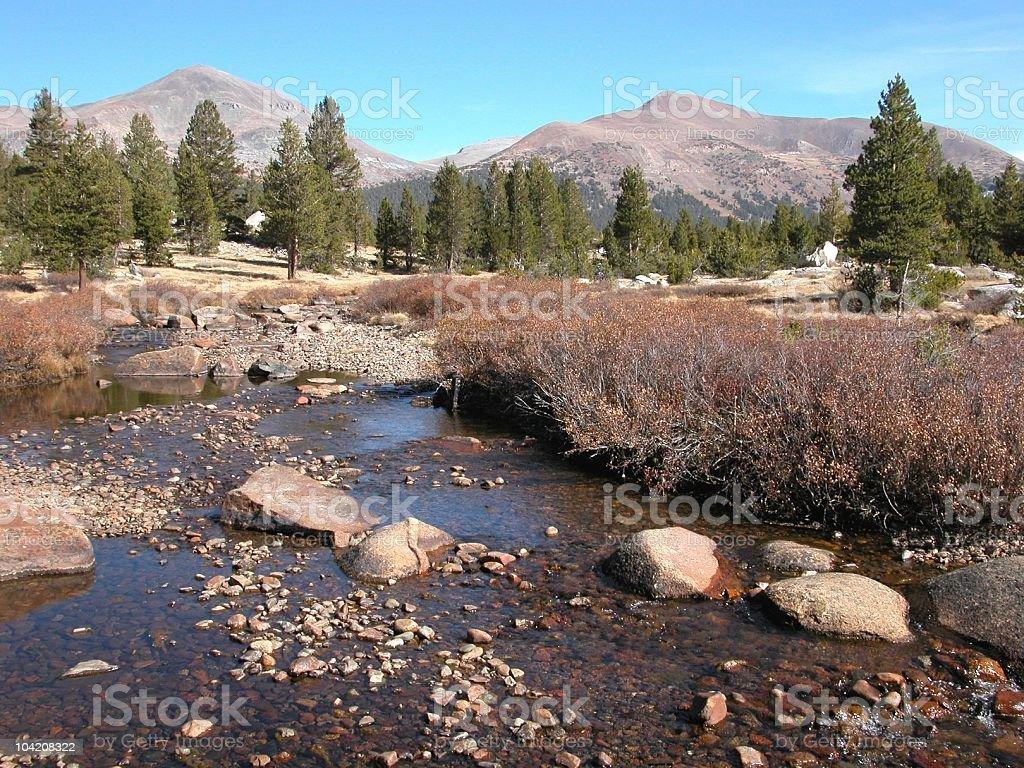 Tuolumne River and Meadow, Yosemite National Park, California, USA stock photo