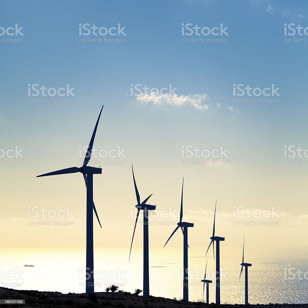 Turbine Farm and Ocean, Green Energy royalty-free stock photo