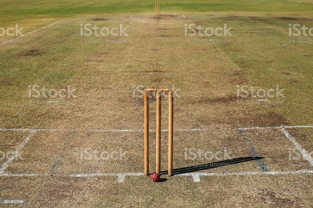 Turf Cricket Pitch stock photo
