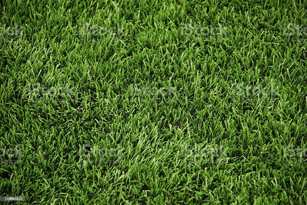 A turf of summer green grass ready to be viewed stock photo