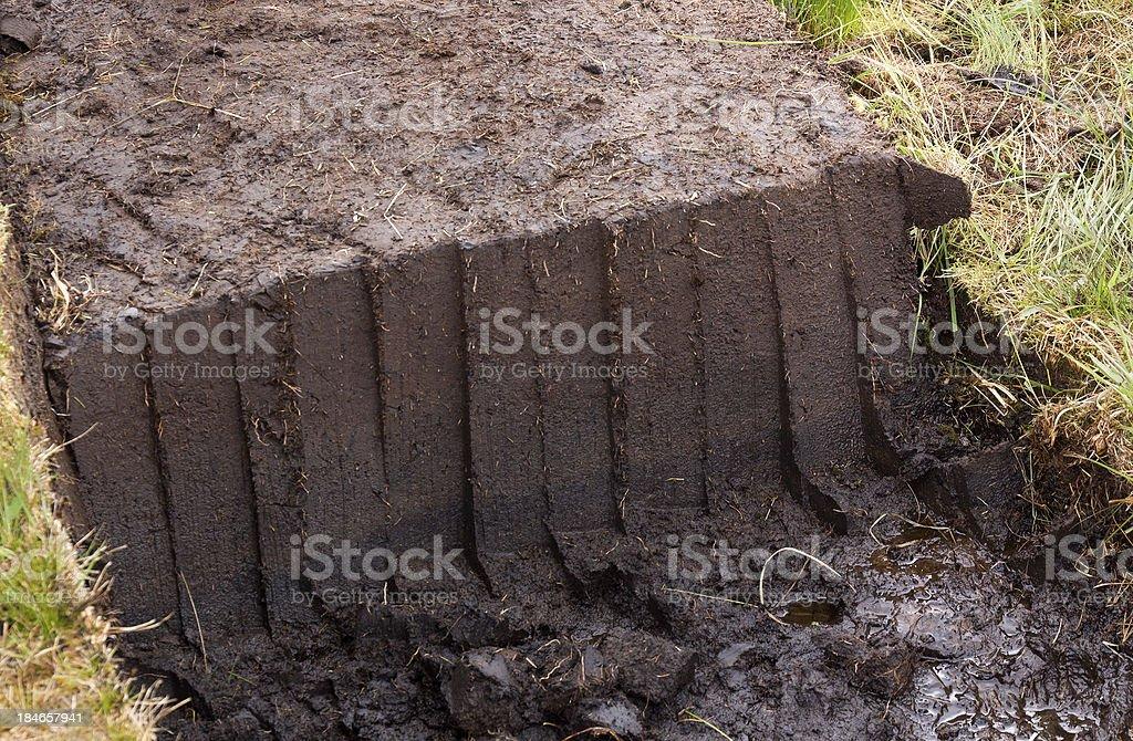 turf stock photo
