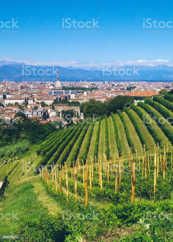 Turin from a hill stock photo
