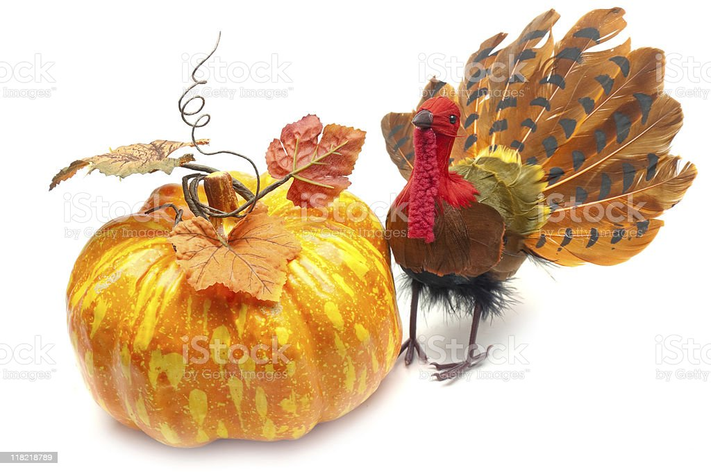 Turkey and Pumpkin royalty-free stock photo