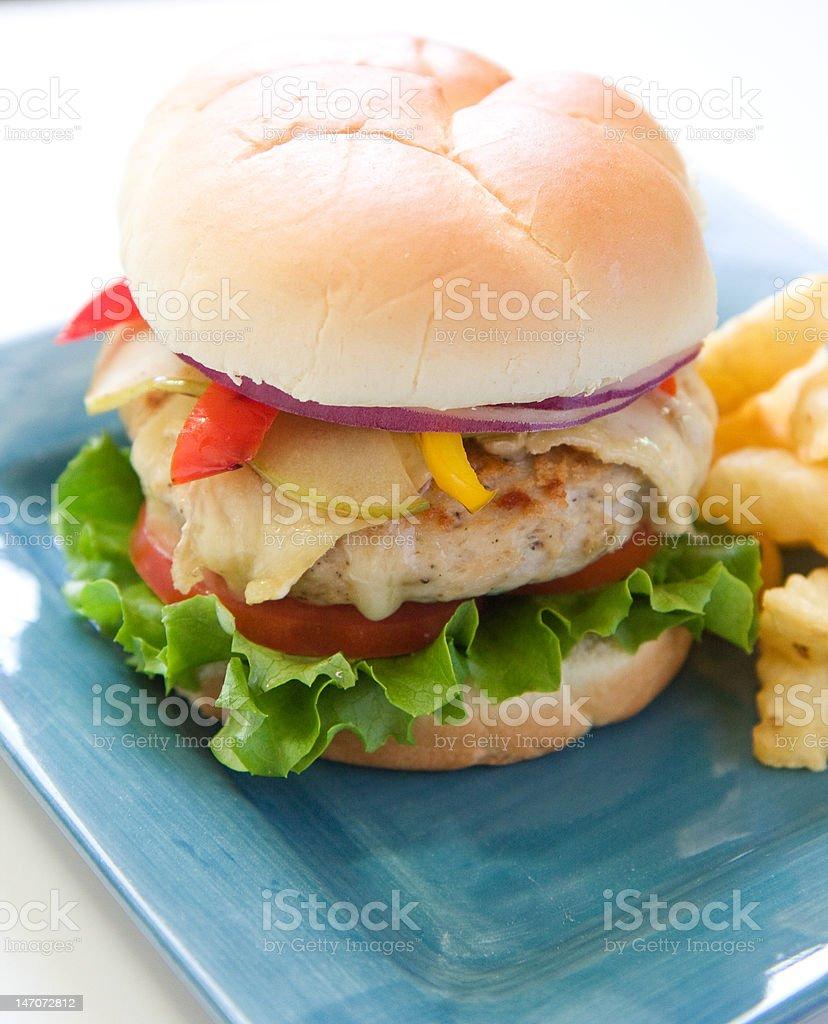 Turkey Burger royalty-free stock photo