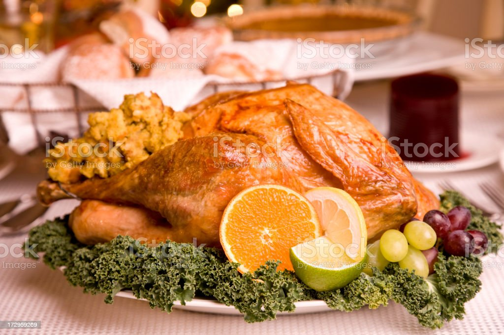 Turkey Day (XXL) royalty-free stock photo