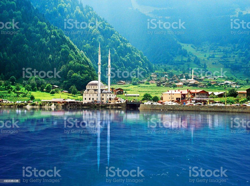 Turkey Lake stock photo