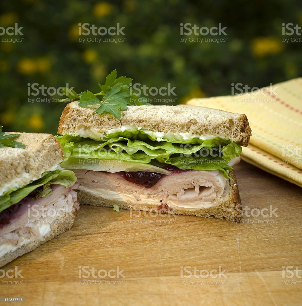 Turkey or Chicken & Vegetable Sandwich, Cranberry Sauce, Thanksgiving Leftovers royalty-free stock photo