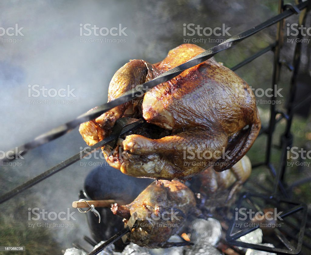 Turkey roasting over open fire.  Smoke.  Copy space. royalty-free stock photo