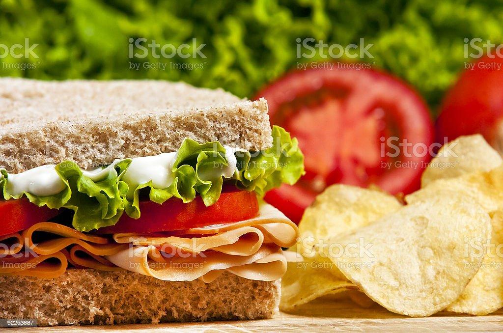 turkey sandwich royalty-free stock photo