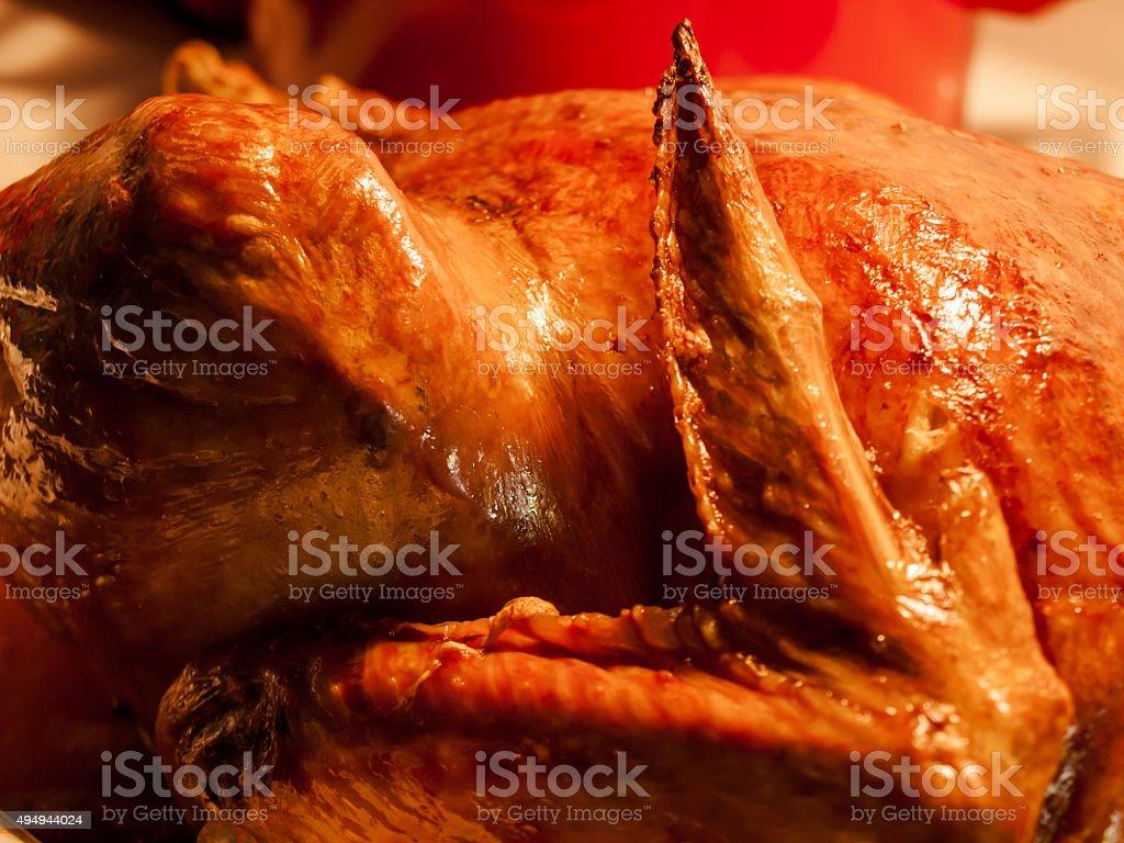 Turkey Wing stock photo