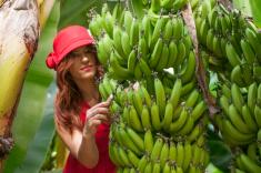 Turkish fashion model in banana garden stock photo