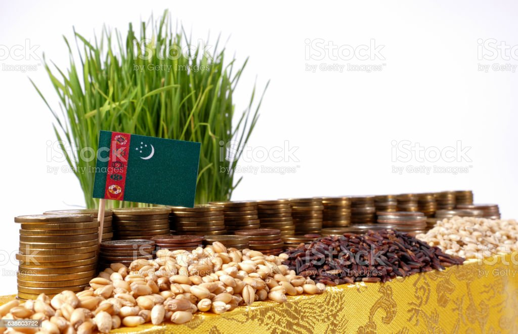 Turkmenistan flag with stack of coins and piles of wheat stock photo