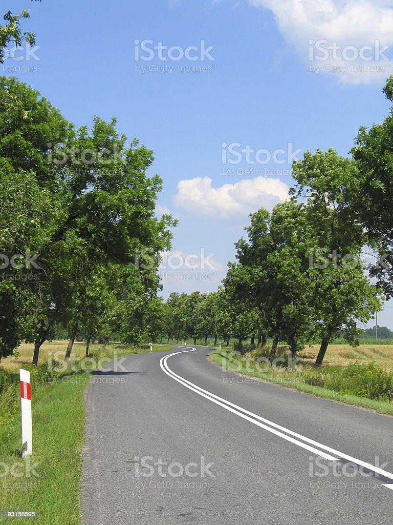 Turn right, left... [Sunny day road] royalty-free stock photo