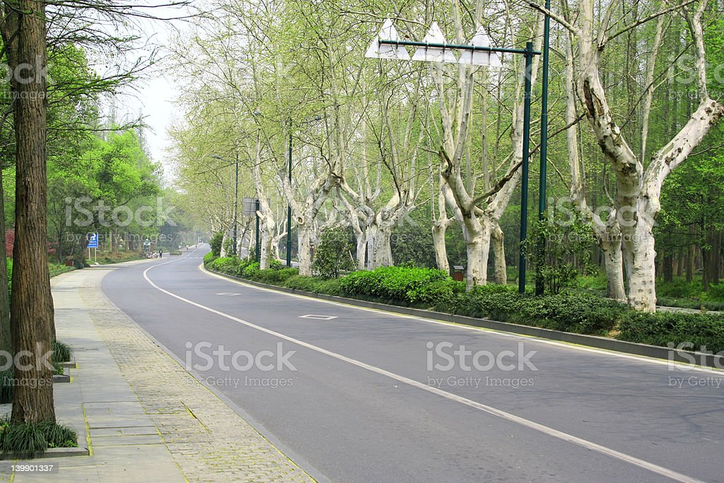 Turn Right Then royalty-free stock photo