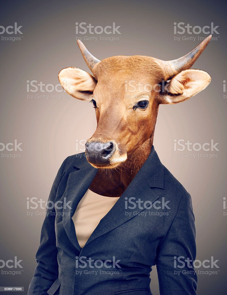 Turning your business into a cash cow stock photo