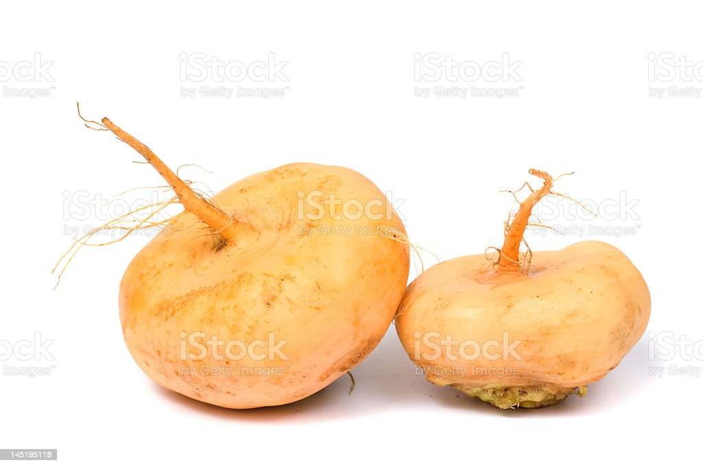 Turnip royalty-free stock photo