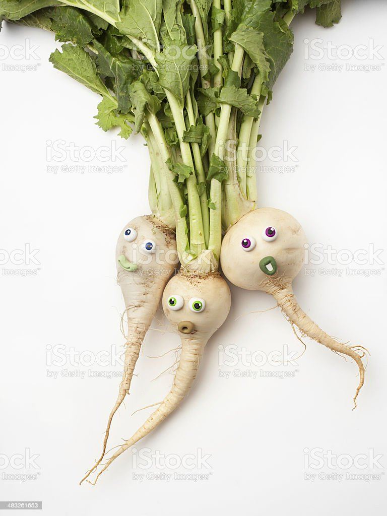 Turnips portrait royalty-free stock photo