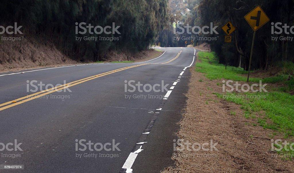 Turns and curves of Kohala Mountain Road stock photo