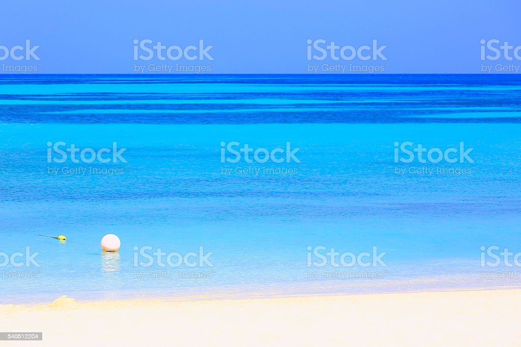 Turquoise bright beach – Aruba turquoise caribbean tropical paradise stock photo