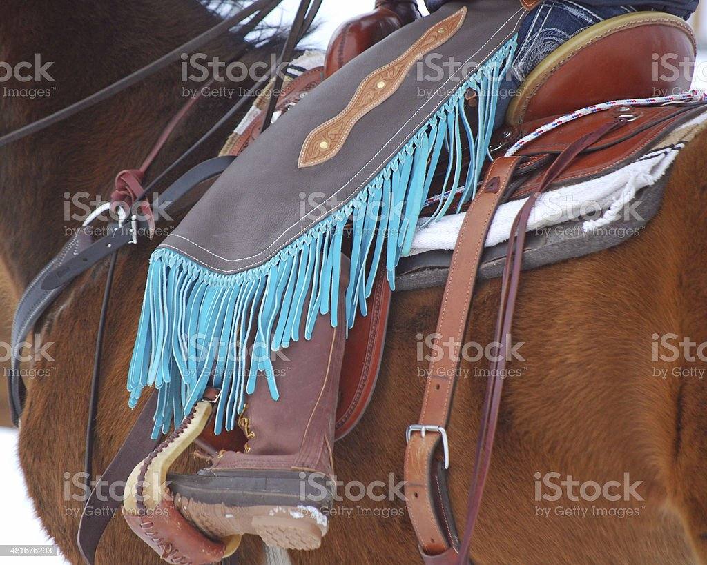 Turquoise chinks for working cattle. stock photo