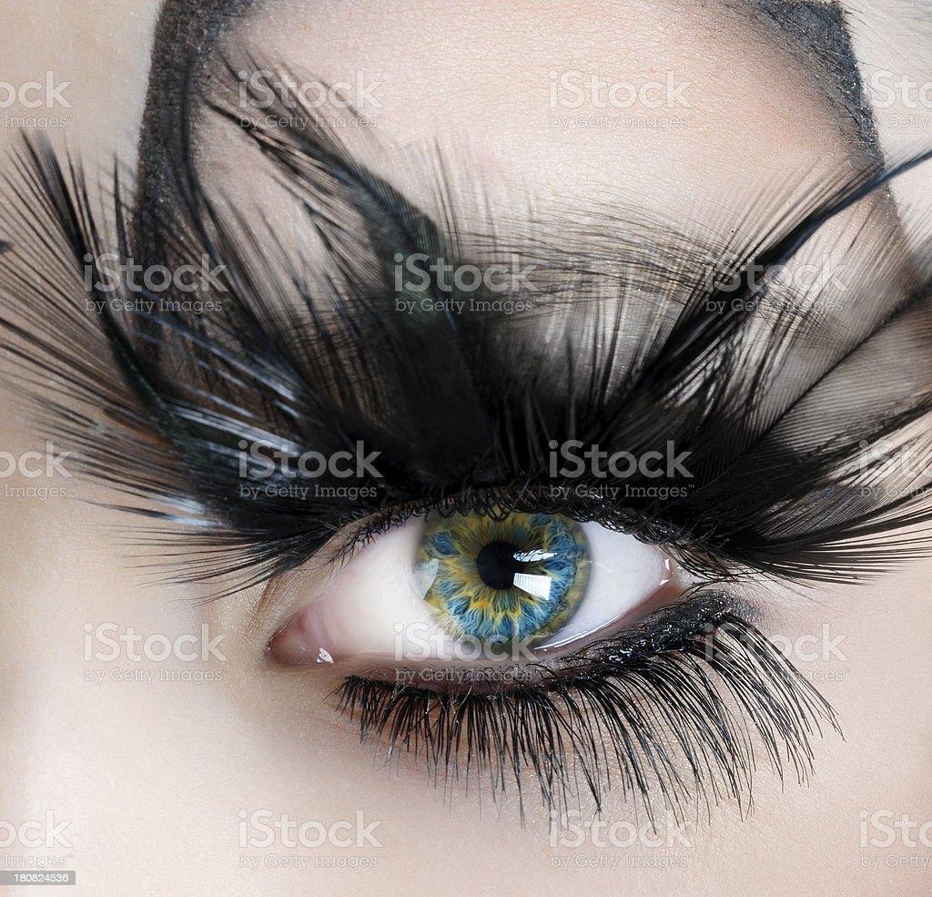 turquoise eye stock photo