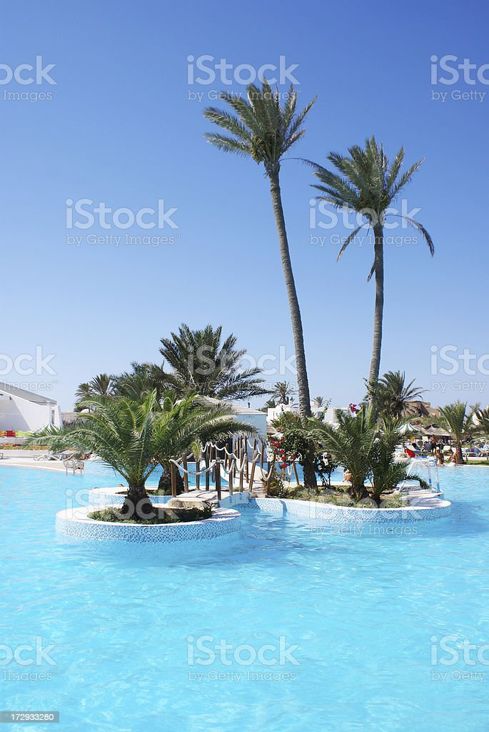 Turquoise poll with palms and clear sky royalty-free stock photo