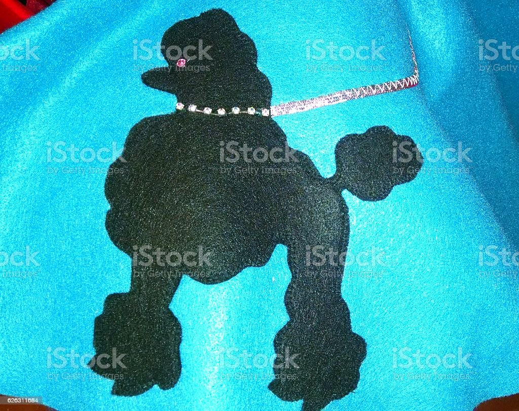 Turquoise Poodle Skirt stock photo
