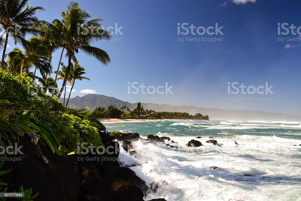 Turtle Beach near Haleiwa - North shore Oahu, Hawaii stock photo