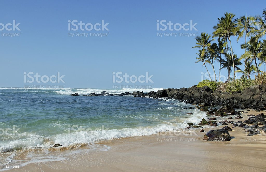 Turtle Beach royalty-free stock photo