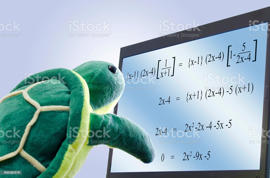 Turtle looking at math stock photo