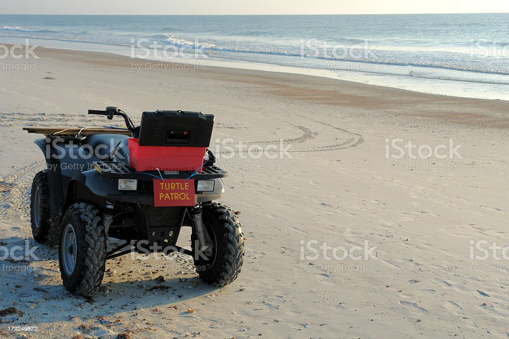 Turtle Patrol 4 Wheeler stock photo