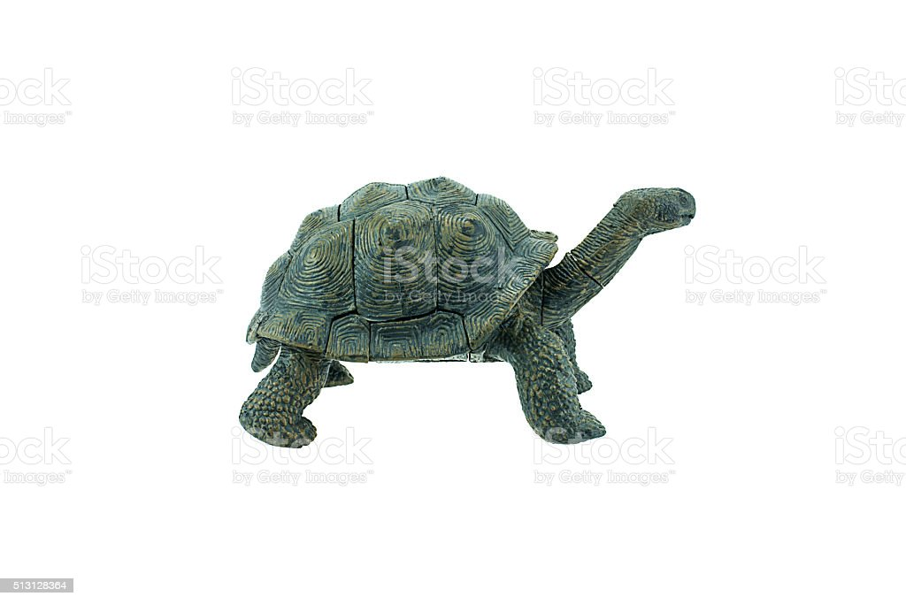 Turtle plastic toy isolated on white background stock photo