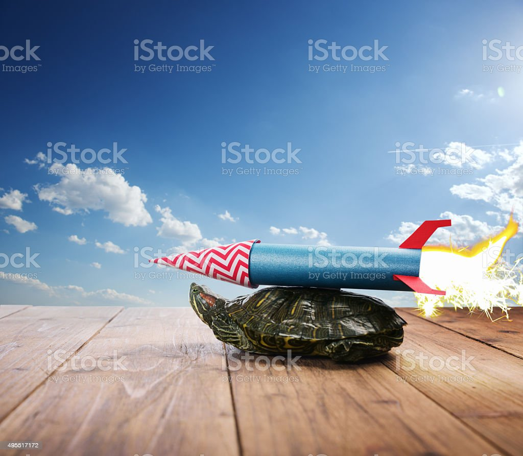 Turtle with rocket propulsion aspiring to fly stock photo