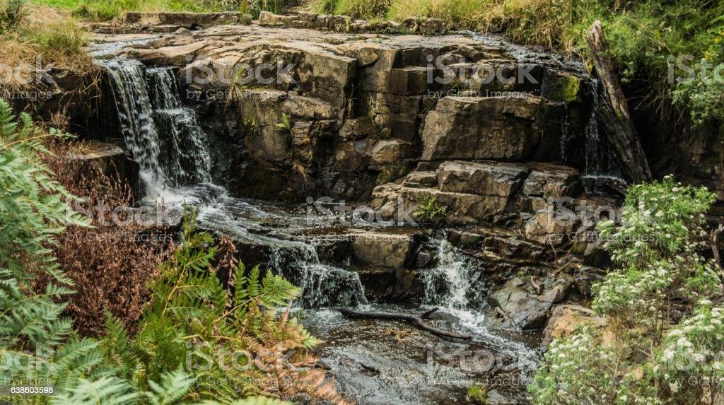 Turtons Creek Falls stock photo