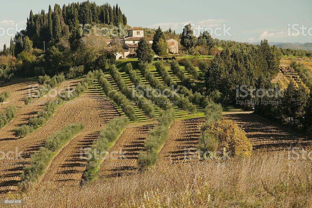 Tuscan atmosphere royalty-free stock photo