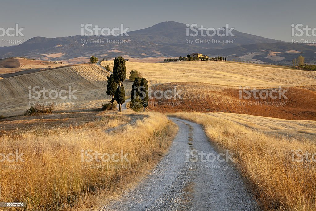 Tuscan countryside at sunset, Italy royalty-free stock photo