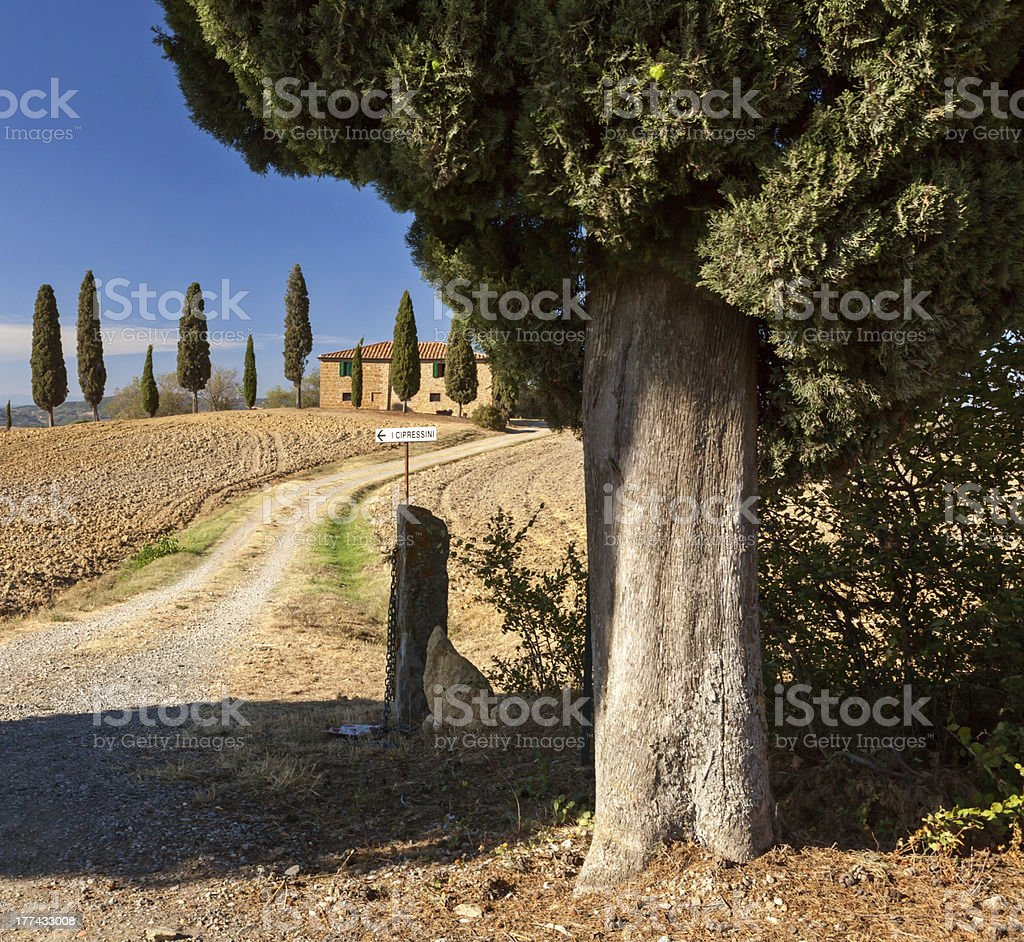 Tuscan countryside near Pienza stock photo