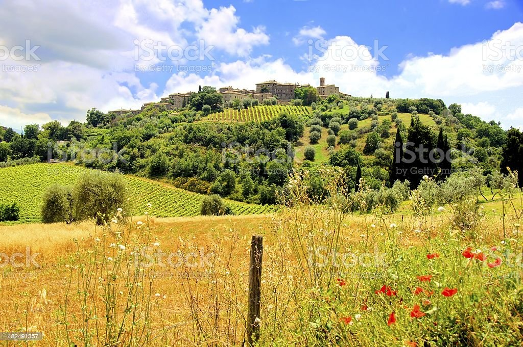 Tuscan countryside view royalty-free stock photo