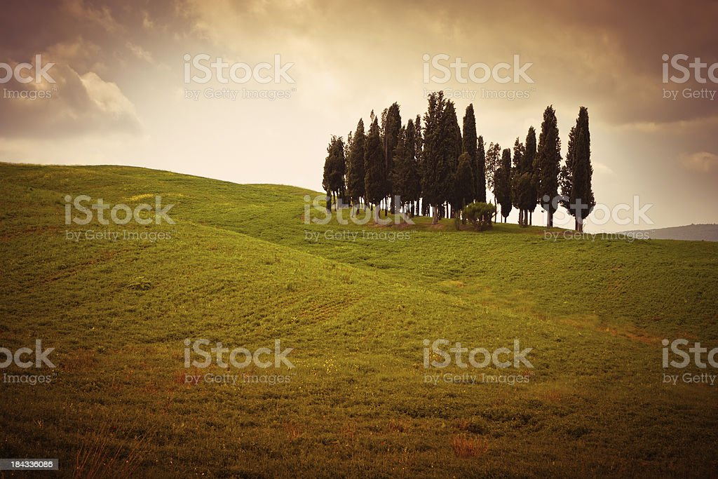 Tuscan Countryside with Cypresses, Val d'Orcia in Italy royalty-free stock photo