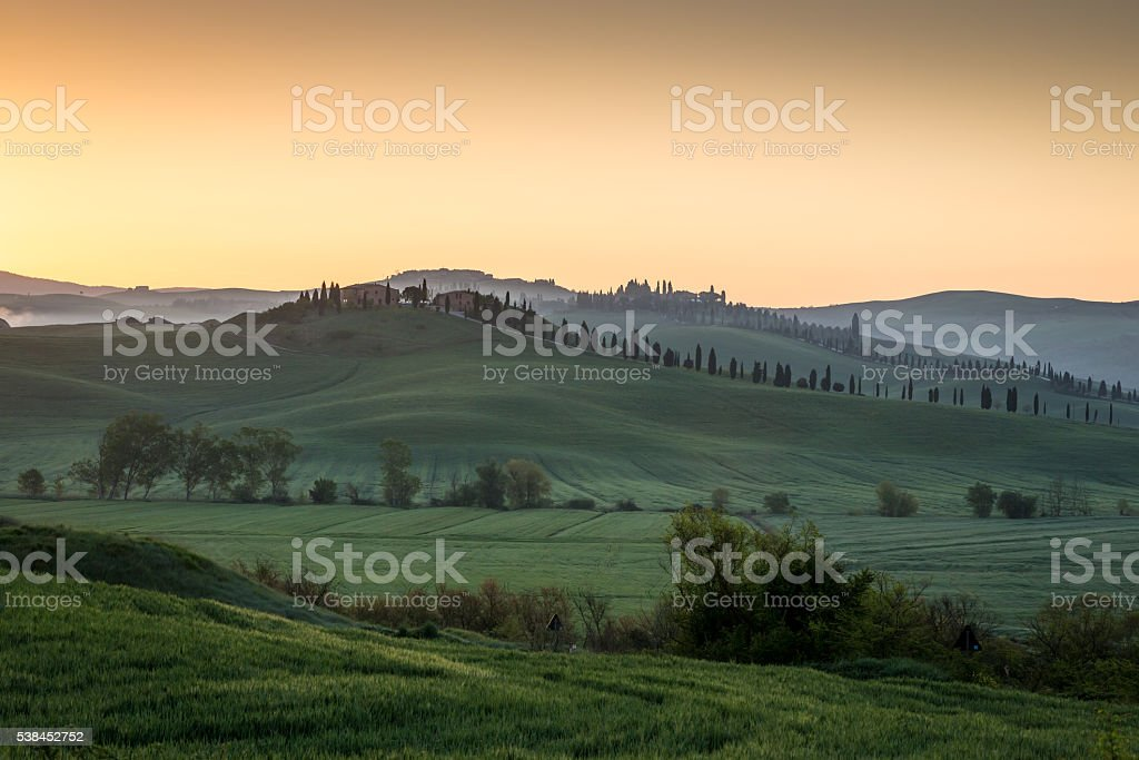 Tuscan curves at sunrise stock photo