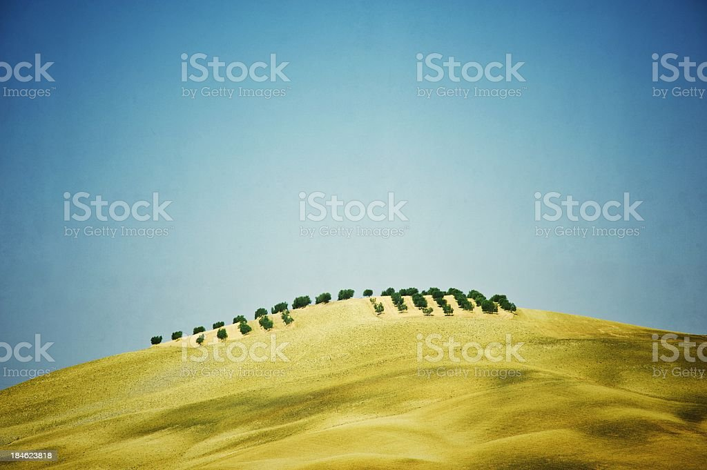 Tuscan Dry Hill royalty-free stock photo