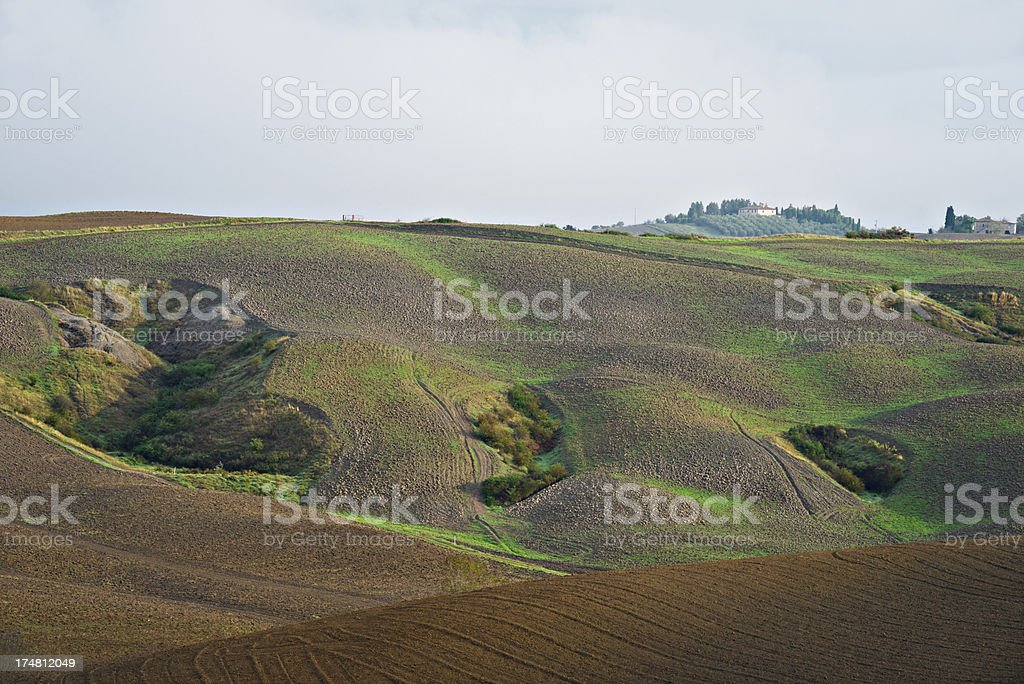 Tuscan field in autumn. royalty-free stock photo