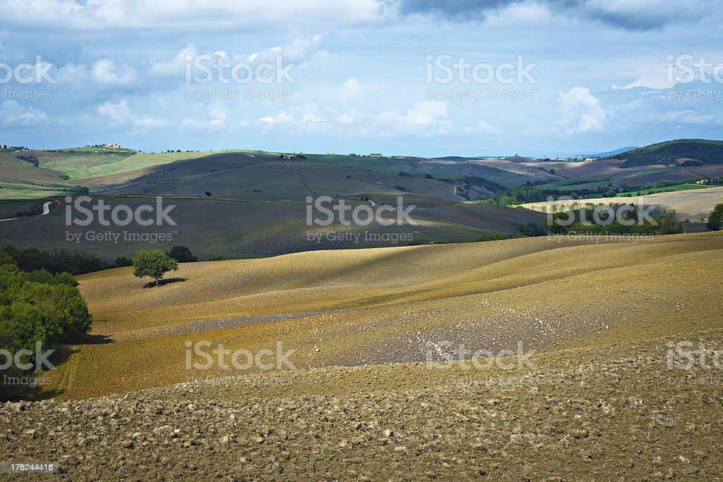 Tuscan field in autumn royalty-free stock photo