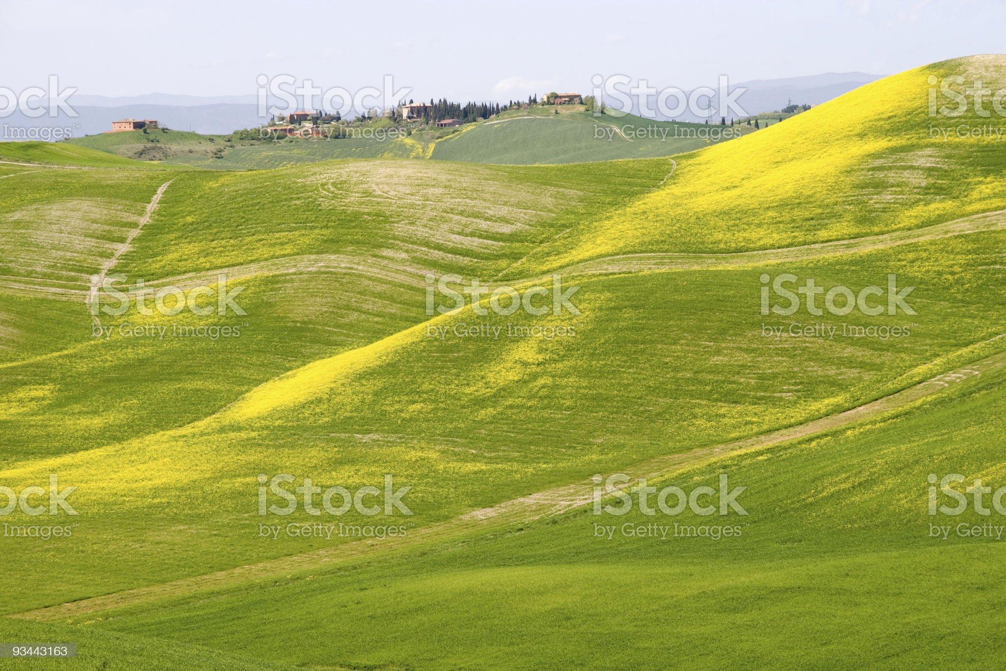 Tuscan hills royalty-free stock photo