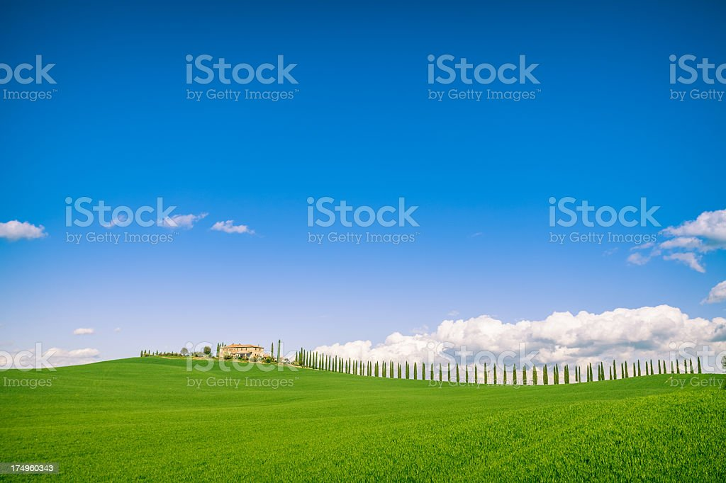 Tuscan hills spring royalty-free stock photo