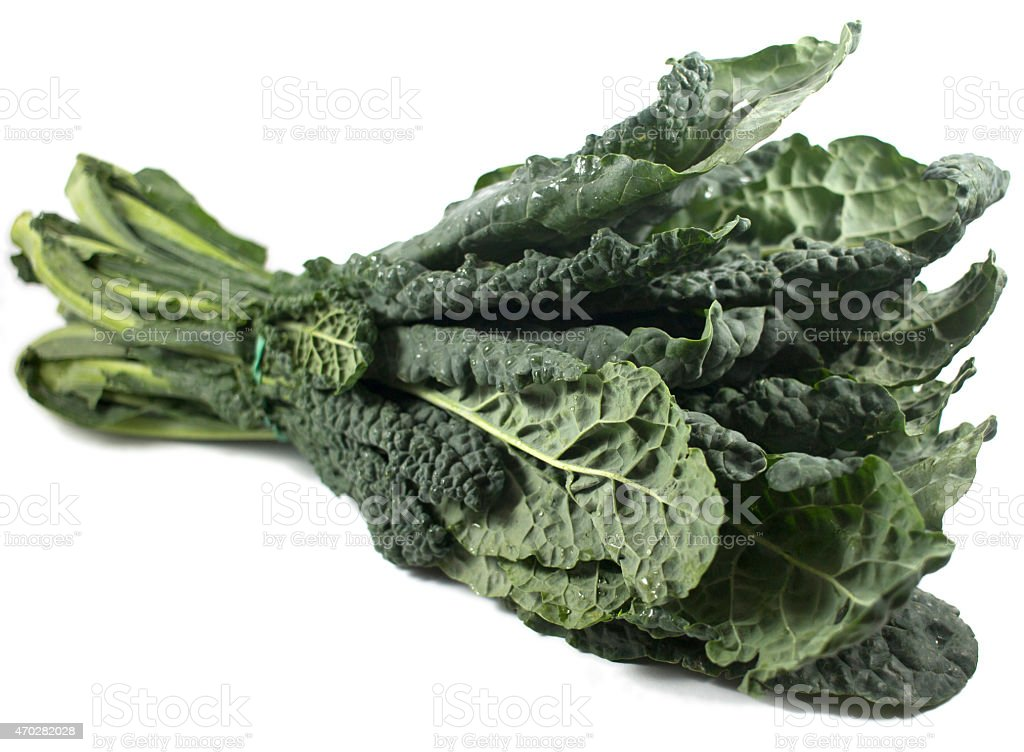 Tuscan Kale. stock photo