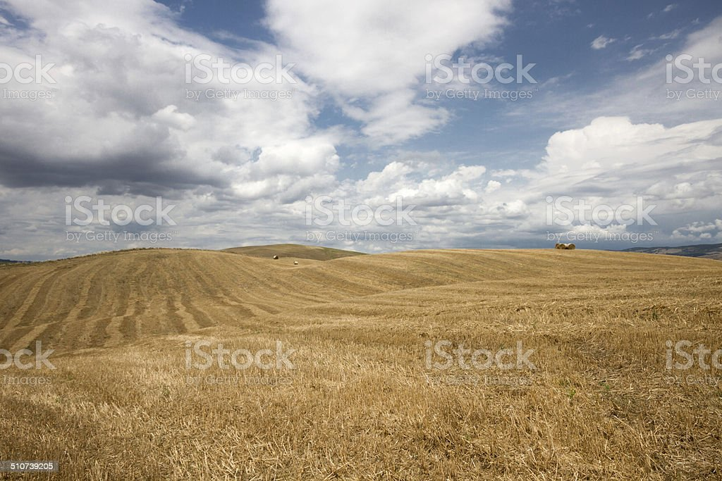 Tuscan landscape in Val d'Orcia (Siena, Italy) stock photo